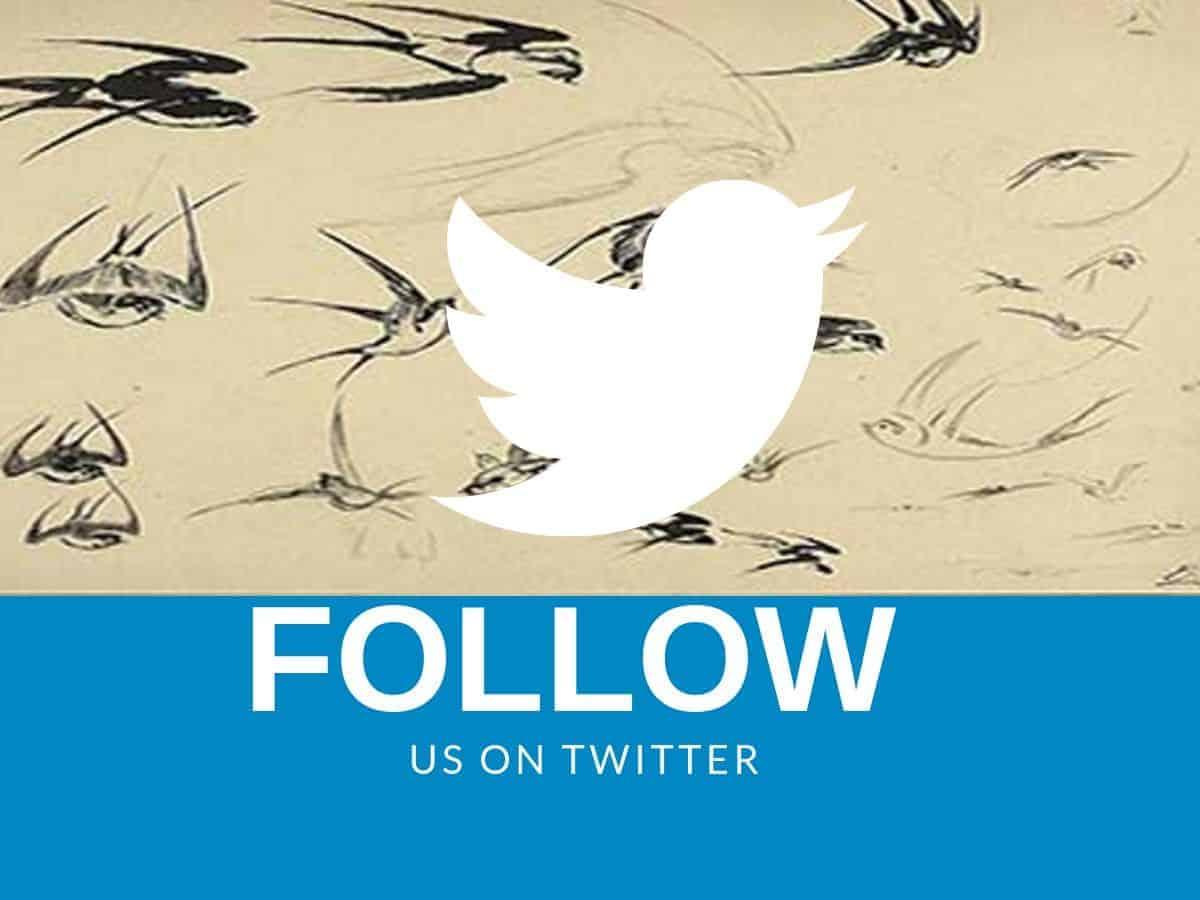 Guía avanzada de Twitter: consejos y herramientas