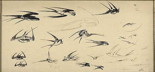 pintura de pajaros volando de Félix Henri Bracquemond