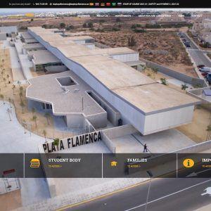 Página Web IES Playa Flamenca